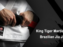 brazilian-jiu-jitsu-belts-copy