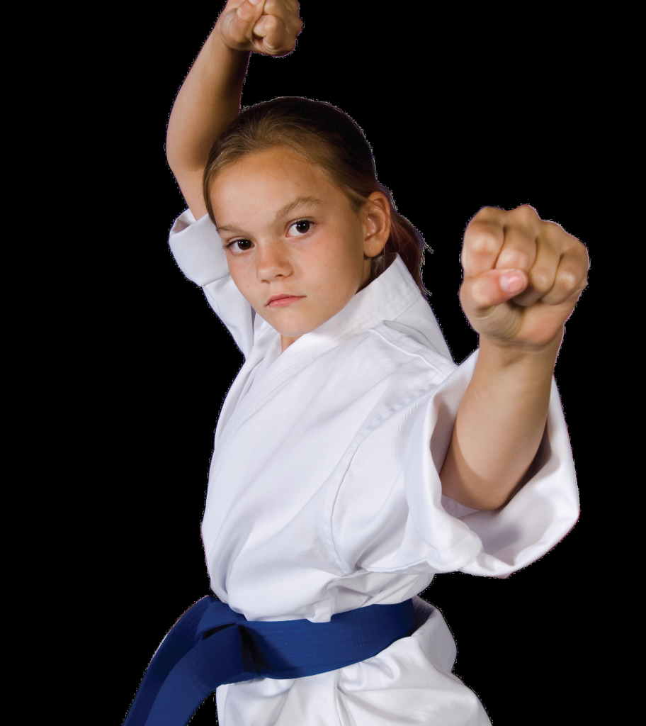 kids-karate-king-tiger-martial-arts-chesapeake-1-e1412962723964-912x1024