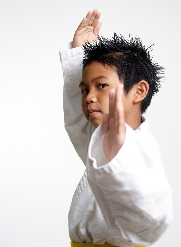 king tiger martial arts kids self defense
