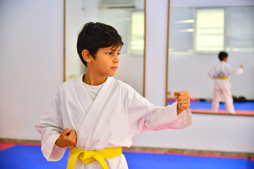 king tiger martial arts and karate kids and adults