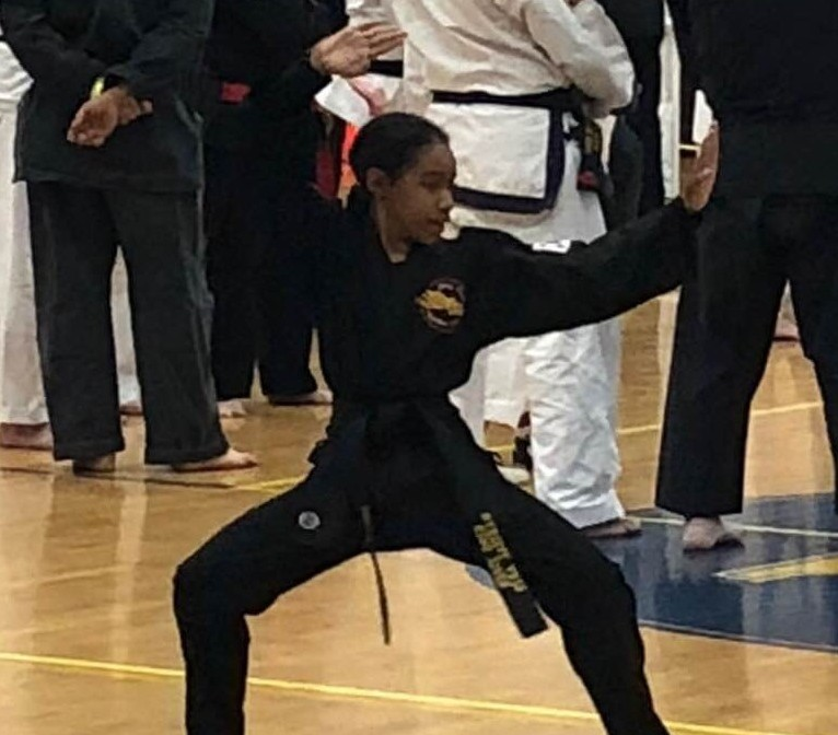 winning king tiger martial arts chesapeake