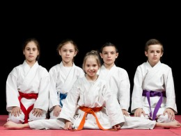 Children and adults king tiger martial arts chesapeake