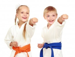 Chesapeake king tiger martial arts and karate kids children and adults